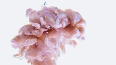 hersenen / abstracte weergave van het brein