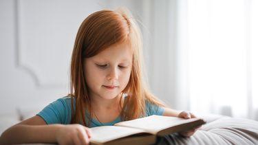 boeken basisschool voorbereiding