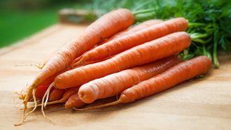 wortelkoekjes