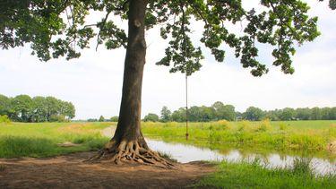Uitzicht over de velden vanuit het Kraaiennest in Speelbos Roekpad in Drenthe