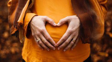 zwanger zijn in de herfst / zwangere vrouw