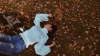 Vrouw die in een herfsttrui op de grond ligt tussen de blaadjes en met twee honden speelt