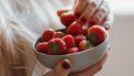 zomerfruit / vers fruit bewaren