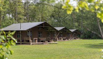 Safaritenten Vakantiepark Westerbergen