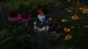 Met deze DIY tips maak je van je tuin een sprookje