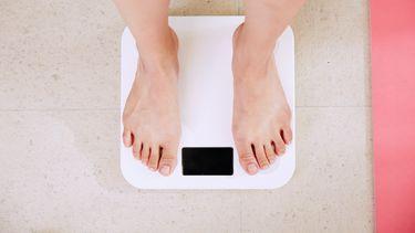 lichaamsvet vruchtbaarheid