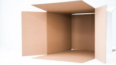 Een kartonnen doos helpt bij de ontwikkeling van het IQ van je baby