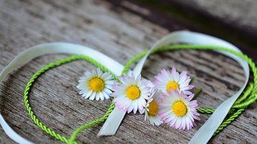 bloemenkrans knutselen
