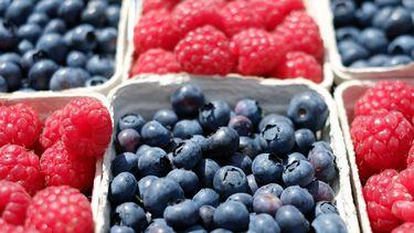 klein fruit gezonder