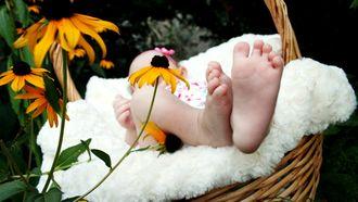 babynamen ter wereld