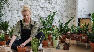 vrouw zit op de grond tussen heleboel planten en ervaart de voordelen van planten in je kamer