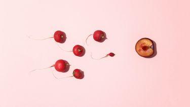 fruit dat zwemmend sperma uitbeeld