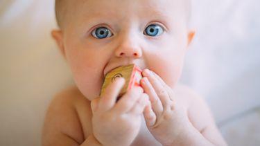 bijtring / baby met speeltje in zijn mond