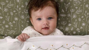 Baby in beddengoed van de nieuwe collectie van Little Dutch