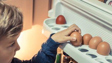 eieren in de koelkast
