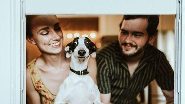 hecht gezin met een hond