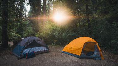 Kamperen kleine kinderen in een tent in een bos in de vakantie