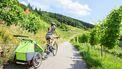 fietskar-lidl