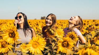 gelukkiger voelen wetenschap