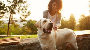 Vrouw en haar hond in het park